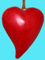cœurs indonésie